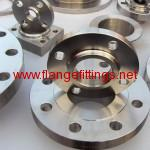 forged flange2